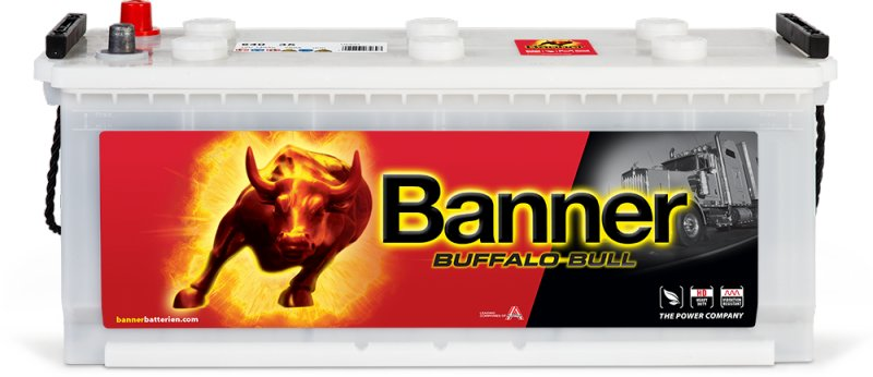 АКБ Banner Buffalo Bull